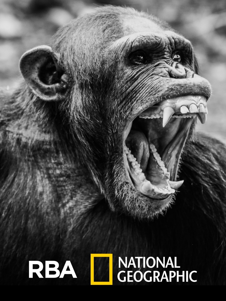 RBA - National Geographic
