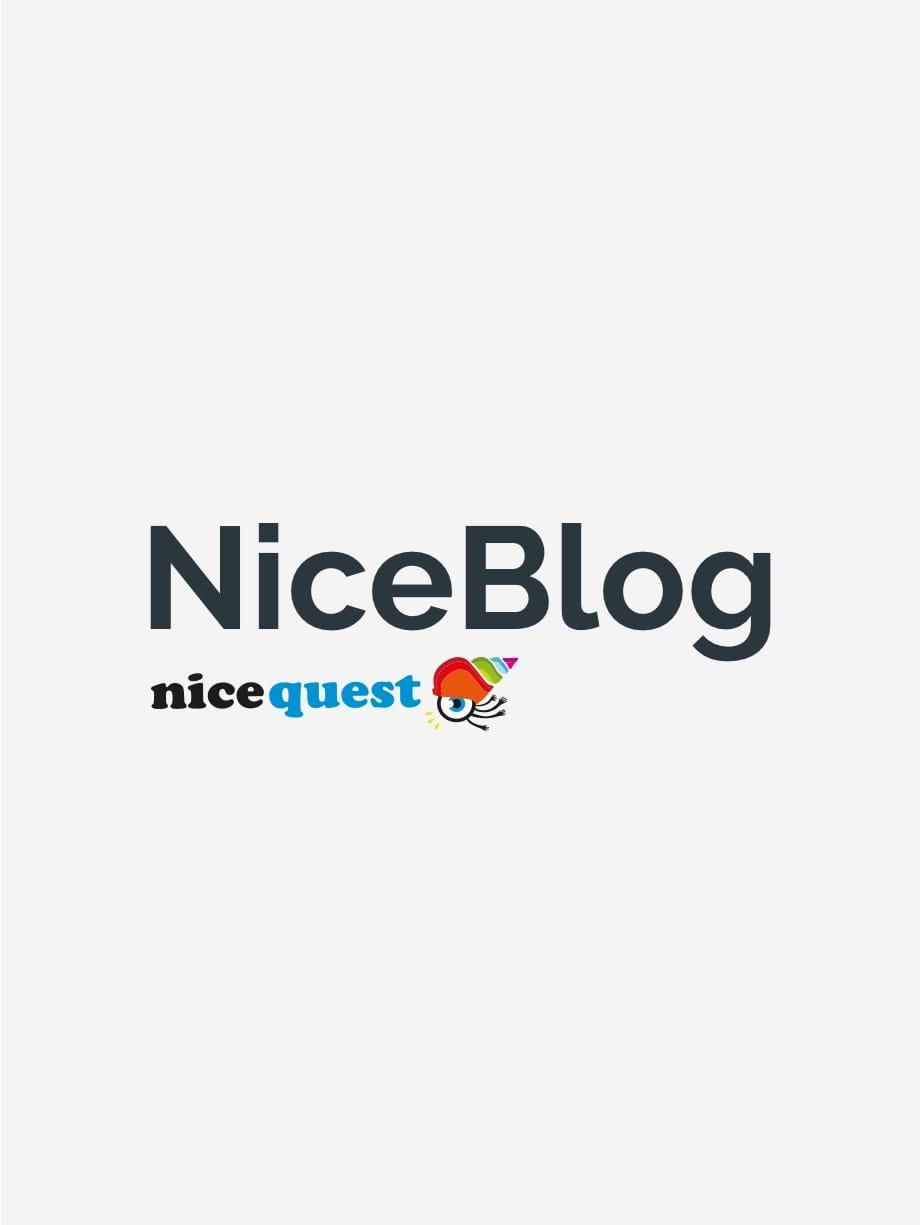 Nicequest - NiceBlog